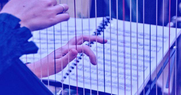 Skladba za harfistko Mario Letizio Michielon - Luisa Antoni